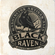 Black Raven Coaster Set w/ Stand image 2
