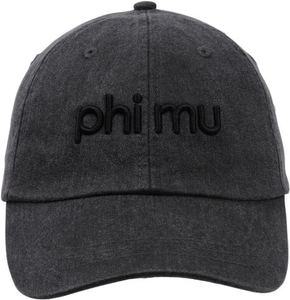 3D Embroidery Hat - phi mu