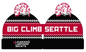 Big Climb Knit Beanie