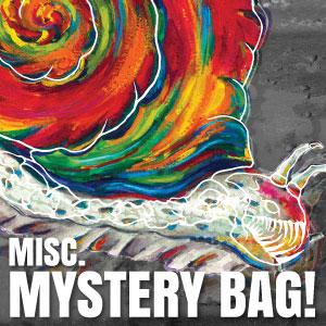 Misc. Mystery Bag