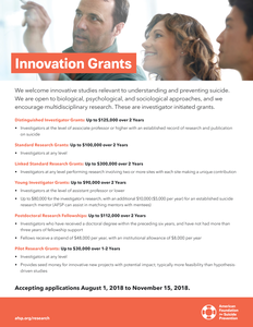 2018 Innovation Grants Flyer